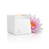 Jimmyjane - Afterglow Massage Candle Pink Lotus Sexshop Eroware -  Sexartikelen