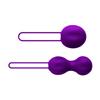 Nomi Tang - IntiMate Kegel Set Purple Sexshop Eroware -  Sexartikelen