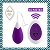 FeelzToys - Anna Vibrating Egg Remote Deep Purple Sexshop Eroware -  Sexspeeltjes