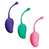 Sportsheets - Sincerely Kegel Exercise System 3 Pack Sexshop Eroware -  Sexspeeltjes